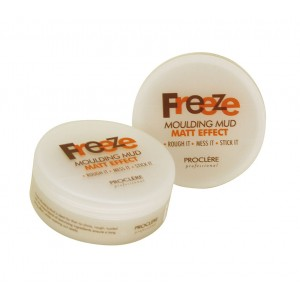 Freeze Moulding Mud 100g
